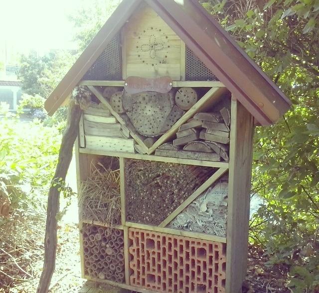 Come attirare uccellini, insetti e piccoli mammiferi nel vostro giardino